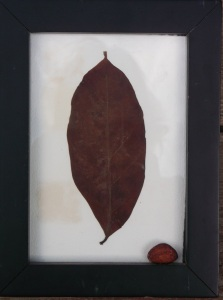 CacaoLeafFramed1 copy